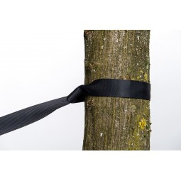 Amazonas Baumschutz Nahaufnahme