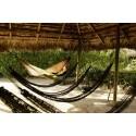 Amazonas Adventure Hängematte - im Einsatz in den Tropen