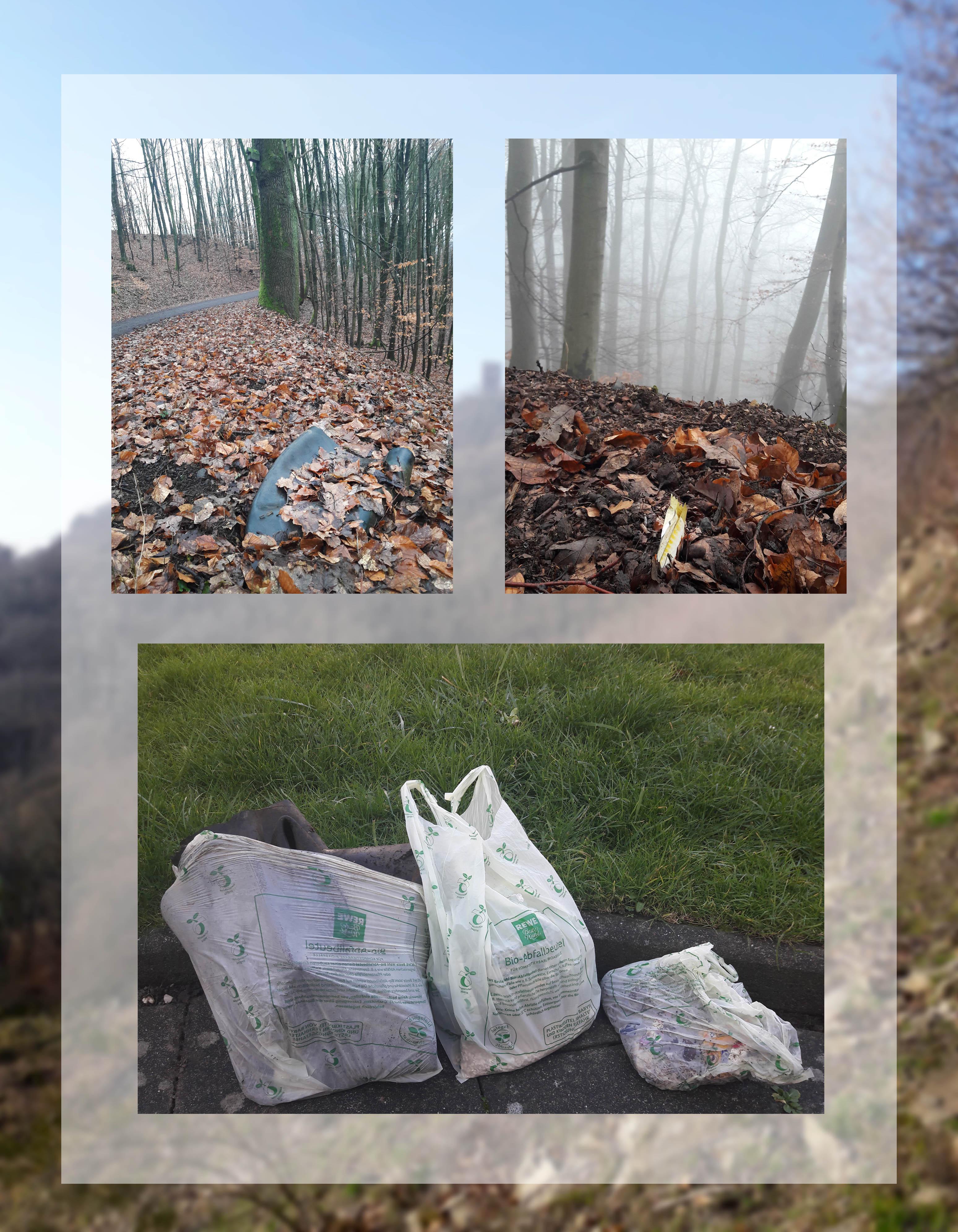 Diverse Müllsorten, die sich im Siebengebirge finden lassen