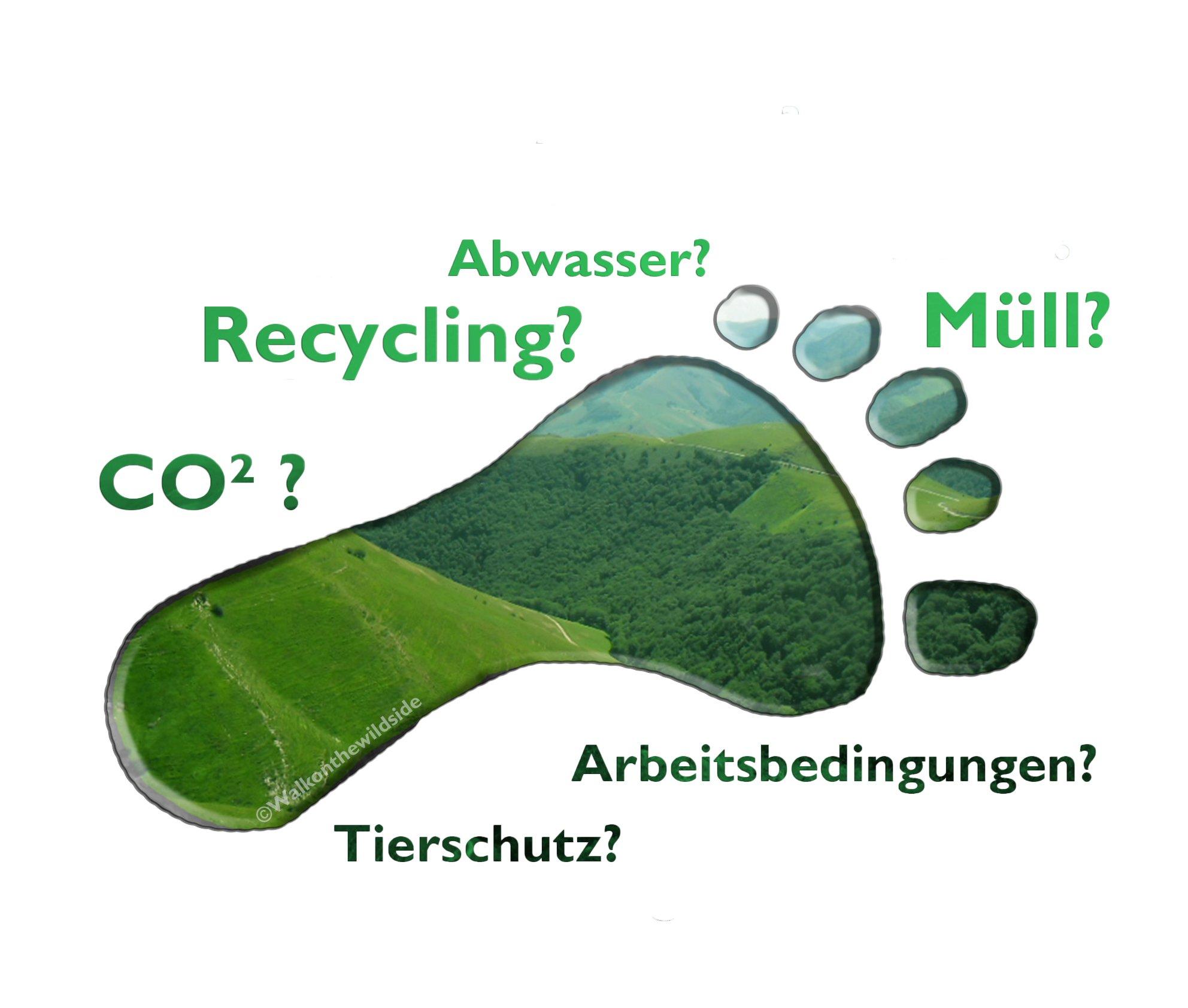 Grafik Nachhaltigkeit und ökologischer Fußabdruck