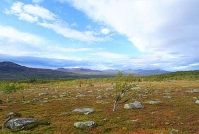 Schwedische Berglandschaft