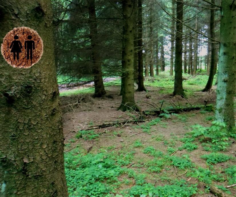 Unterwegs ist oft der Wald die einzige Toilette weit und breit
