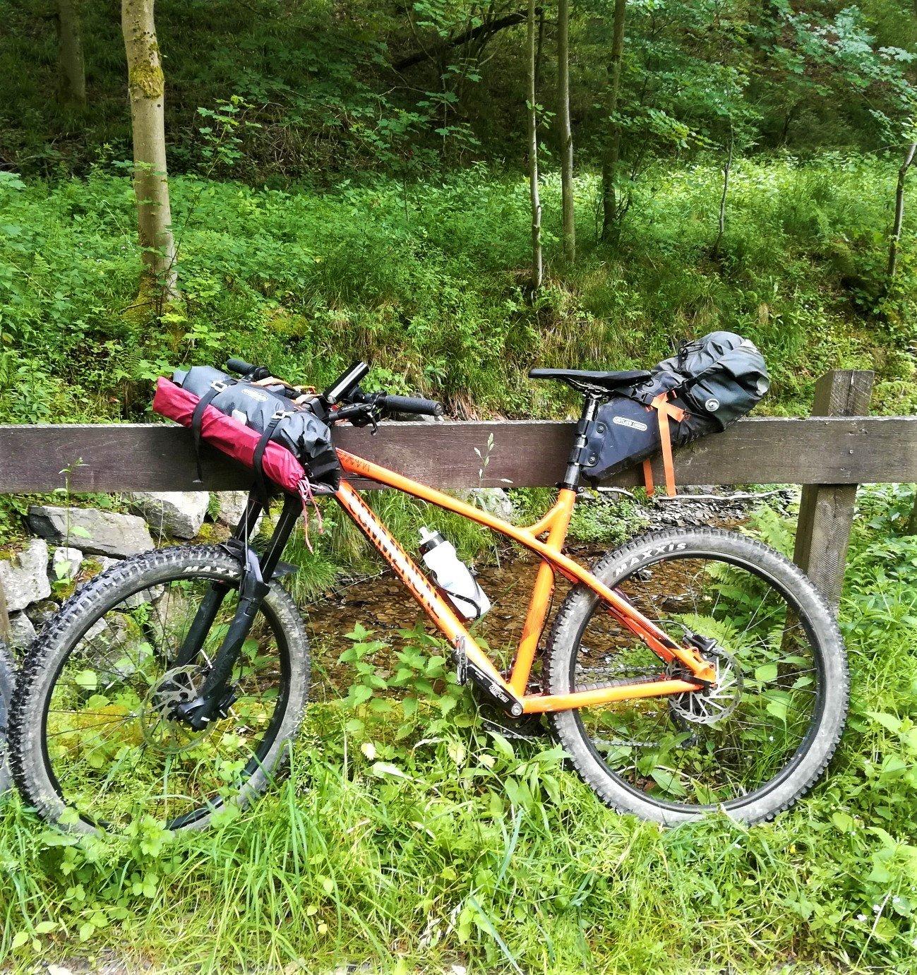 Bikepacking Rad im Wald