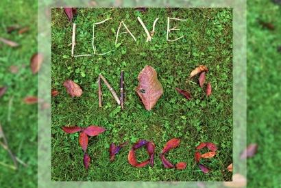 Leave No Trace mit Blättern und Stöcken auf Wiese gelegt