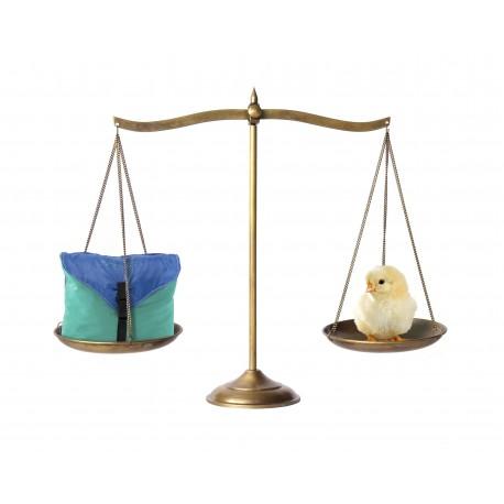 Gewichtsvergleich Amazonas Hängematte
